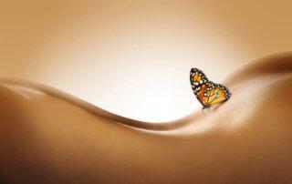 een mooie sterke en soepele rug
